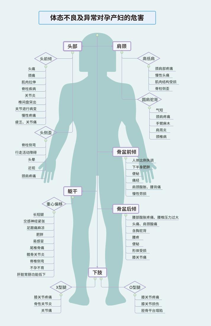 密度计_FONCTI-630身体姿态体态姿势分析系统